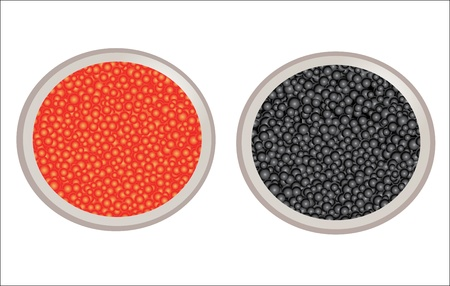 caviar: caviar in metal can
