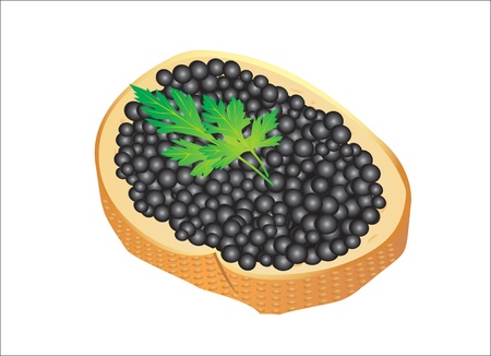 Black caviar served on bread Vector