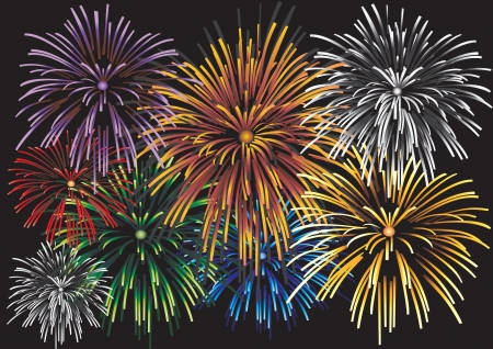 Beautiful Vector Fireworks, on a black background. Illustration