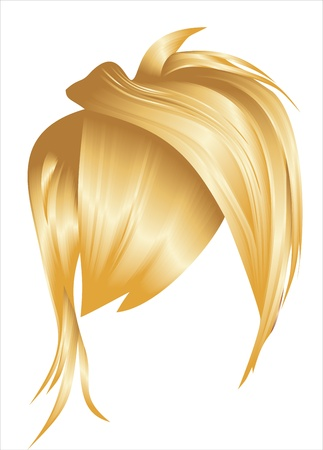 hair styling for woman Vector