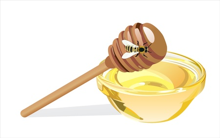 Sweet honey in glass bowl with wood stick and bee isolated on white Stock Vector - 17207287