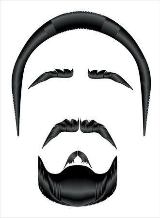 style goatee: Mustache, beard and hairstyle on a white background