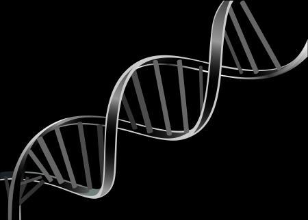 Cadena de ADN aislado sobre fondo negro