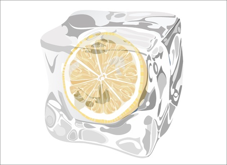 Lemon In Ice Cube Vector