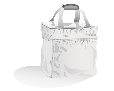 woman handle success: bag isolated over white Illustration
