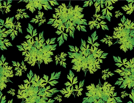 seamless grass background, parsley green leaves  Vector