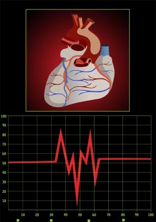 heart monitor: Heart pulse monitor with heart