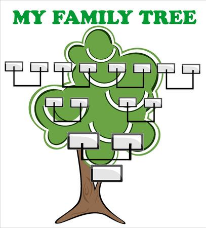 Concept illustration  family tree  Illustration