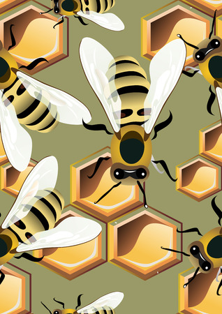 honeyed: pattern with bees and honey combs Illustration