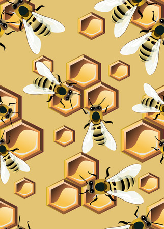 pattern with bees and honey combs Vector