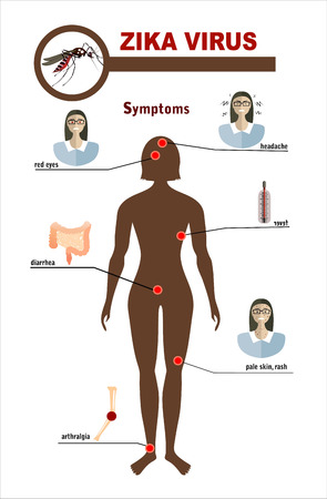 contagion: Flat design illustration concepts Zika virus symptoms infographics with figures and text Illustration