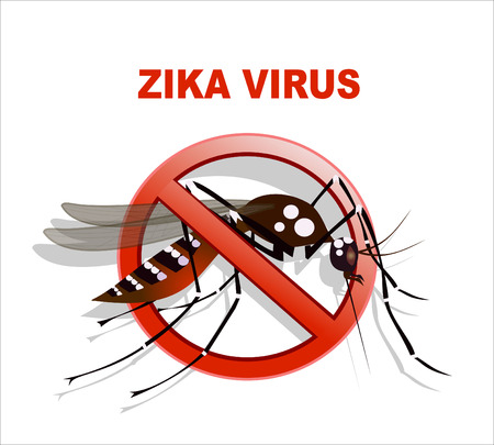 Caution of mosquito icon, spread of zika and dengue virus. Vector Design