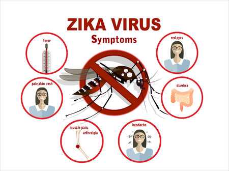 infection: Zika virus symptoms infographics with figures and text Illustration