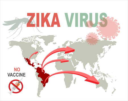 measures: Zika virus infographic elements - prevention, transmission, vaccine, symptoms, microcephaly, protection measures. Zika virus disease. Zika virus design template. Isolated vector illustration. Illustration