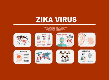 disease prevention: Zika virus infographic elements - prevention, transmission, vaccine, symptoms, microcephaly, protection measures. Zika virus disease. Zika virus design template. Isolated vector illustration. Illustration