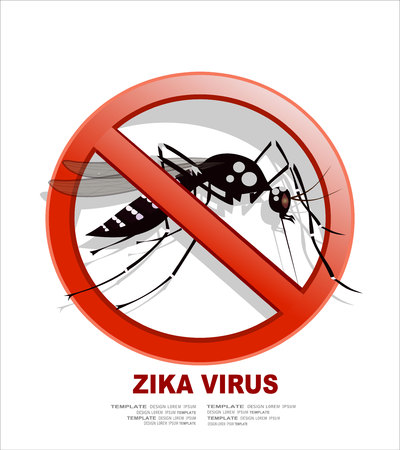 cartoon insect: Caution of mosquito icon, spread of zika and dengue virus. (Vector Design)