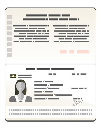 Passport with biometric data. Identification Document Flat Vector Illustration Illustration