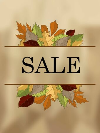 Autumn sale vector concept. Flat design. Colored leaves of variety trees on top and bottom and sample text in the middle. For sale and discount advertising. Product label