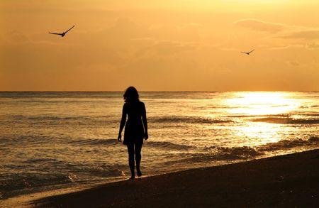 Sanibel 섬에있는 해질녘 해변에서 산책을하는 젊은 여성 - 강화 된 새들 스톡 콘텐츠