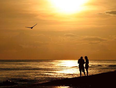 updated: En el examen de la pareja conchas tarde en la noche a pie en la playa - muy rom�ntica escena con una gaviota volando sobre. Actualizado antes de subir - y mejorar la silueta de aves avanzaron en el cielo  Foto de archivo