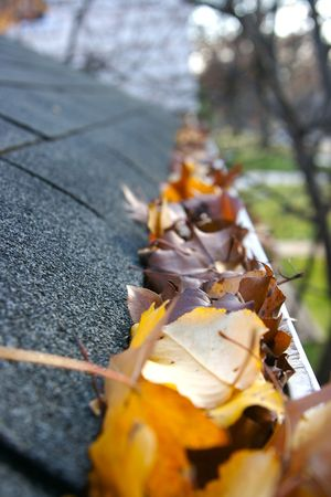 A fall tradition - cleaning the gutters of leaves. Here, we see them clogging the gutters of a traditional home. Could be used for advertisingclean up articlesetc. Narrow DOF photo