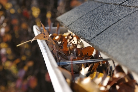 tejas: Una ca�da tradici�n - la limpieza de las cunetas de las hojas. Aqu�, vemos las cunetas obstrucci�n de una casa tradicional. �Podr�a ser usado para publicidad y art�culos de limpieza  etc. Narrow DOF