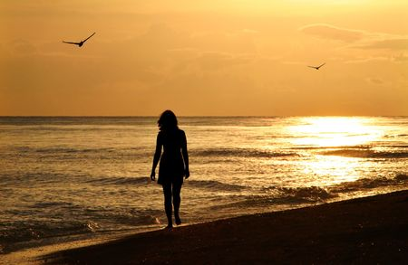alone bird: A young woman taking a walk on the beach at sunset on Sanibel Island - enhanced and added birds