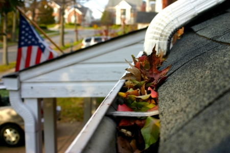 A fall tradition - cleaning the gutters of leaves. Here, we see them clogging the gutters of a traditional home. This version includes flag and other portions of a neighborhood. Narrow DOF