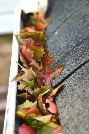 A fall tradition - cleaning the gutters of leaves. Here, we see them clogging the gutters of a traditional home. Could be used for advertising/clean up articles/etc. Narrow DOF Stock Photo - 2433895
