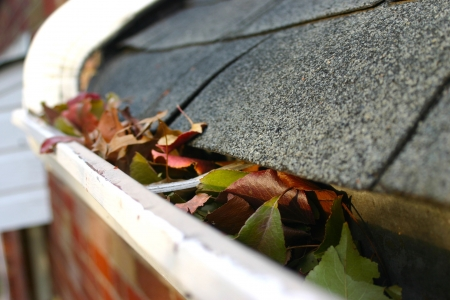 A fall tradition - cleaning the gutters of leaves. Here, we see them clogging the gutters of a traditional home. Could be used for advertising/clean up articles/etc. Narrow DOF