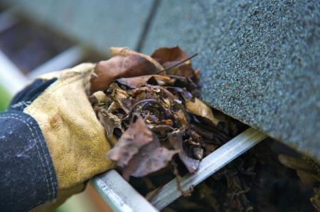 gouttière: Une chute tradition - le nettoyage des goutti�res des feuilles. Ici, nous les voyons l'obstruction des goutti�res d'une maison traditionnelle. Pourrait �tre utilis�e pour la publicit�  articles de nettoyage, etc. Narrow DOF