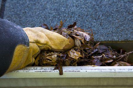 shingles: Una ca�da tradici�n - la limpieza de las cunetas de las hojas. Aqu�, vemos las cunetas obstrucci�n de una casa tradicional. �Podr�a ser usado para publicidad y art�culos de limpieza  etc. Narrow DOF