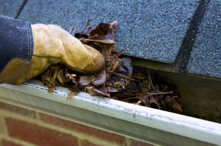 asphalt shingles: A fall tradition - cleaning the gutters of leaves. Here, we see them clogging the gutters of a traditional home. Could be used for advertisingclean up articlesetc. Narrow DOF