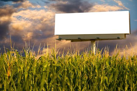 ad: Field of Corn and a billboard in the early evening sun - the golden hour.