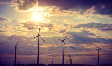 Wind turbine generates electricity