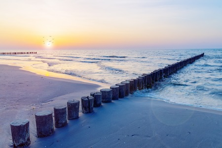 the baltic coast of germany in the summer 스톡 콘텐츠