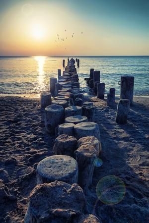 夏にドイツのバルト海の海岸