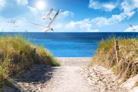 Bałtyckie wybrzeże Niemiec w lecie