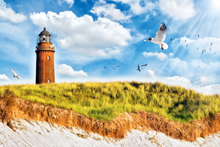 the baltic coast of germany in the summer Standard-Bild