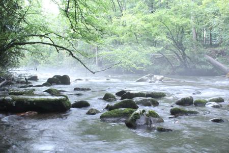 岩の自然の川 写真素材