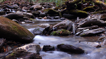 River Water Photography in the Woods of the Great Smoky Mountains Park.
