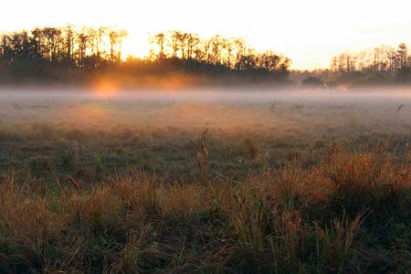 Morning Sunrise over a Farm Field with Heavy Fog on the Horizon.