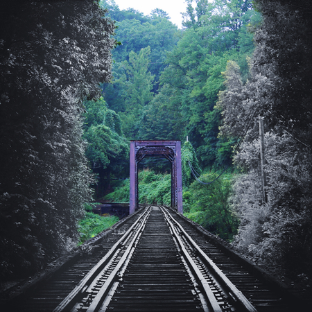Artistic Nature Photography of a Vintage Train Tracks Bridge Fading in Color into the Forest Woods.