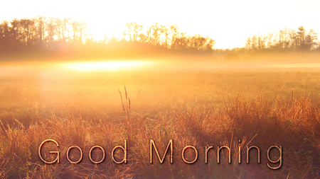 Naturescape Graphic Design of Good Morning Words Typography Lettering on a Grass Field in the Sunrise.