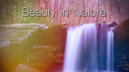 Beauty in Nature Words Lettering over a Waterfall Design in the Woods.