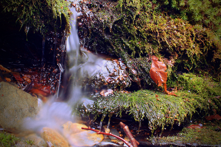 Small Little River Waterfall Streem and Mossy Stones Macro Photography.