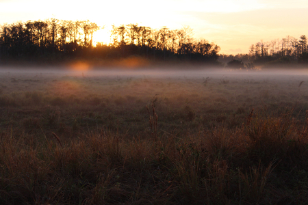 Sunrise On a Farmers Field with Fog and Dew on the Grass.
