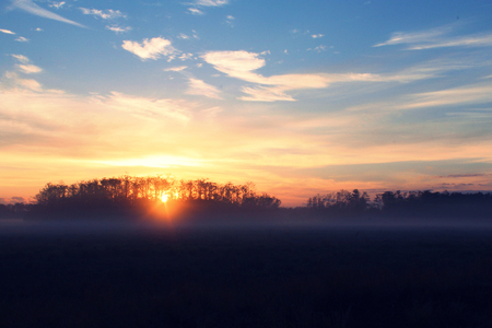 Sunrise Over a Farmers Field in Florida, United States of America.
