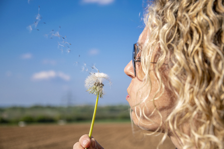 blonde woman blowing a booming dandelion and the seeds fly away from blue sky