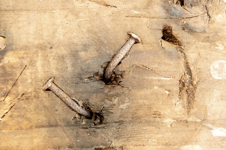 old rusty nail looks out of an old wooden beam
